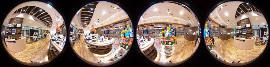 Dual Fisheye Image